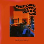 adekunle-gold-before-you-wake-up-netunez