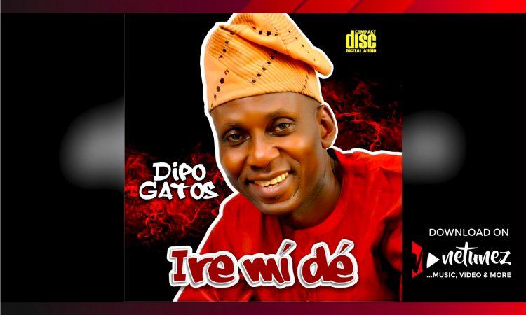 Dipo Gatos - Ire Mi de album cover